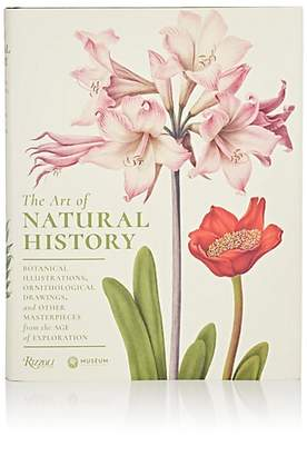 Rizzoli The Art of Natural History