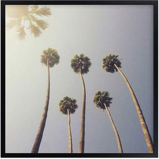 Pottery Barn Kids Sunny Palm Trees, Wall Art by Minted®, 16x16, Black