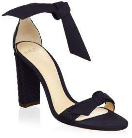 Alexandre Birman Clarita Suede Ankle-Tie Sandals