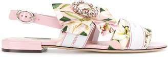 Dolce & Gabbana lily print cady sandals