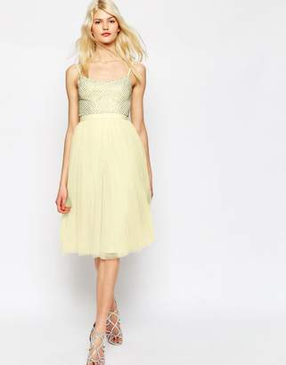 Needle & Thread Coppelia Embellished Ballet Tulle Dress $211 thestylecure.com