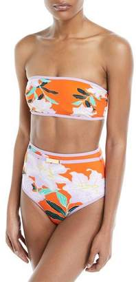 Diane von Furstenberg Straight Bandeau Floral-Print Swim Top