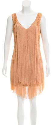 Haute Hippie Fringe Accented Silk Dress