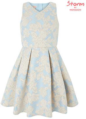 Monsoon Oriental Jacquard Dress