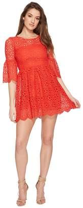 BB Dakota Lauper Floral Eyelet Fit and Flare Dress Women's Dress