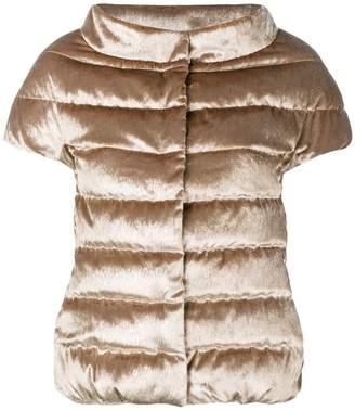 Herno velvet short sleeve padded jacket