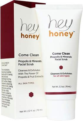 Hey Honey Come Clean Propolis & Minerals Facial Srub