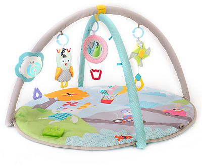 Taf Toys Baby Musical Nature Gym Play Mat