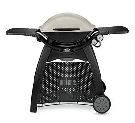 Weber Family Q (Q3100Au) Titanium Natural Gas