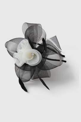 Wallis Black and White Loop Fascinator