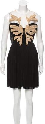 Maria Lucia Hohan Sleeveless Embroidered Mini Dress