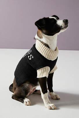 Max Bone Apres Ski Dog Sweater