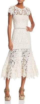 Joie Celedonia Lace Illusion Dress