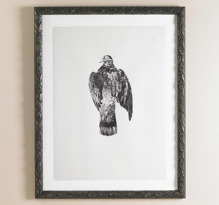 DwellStudio Pigeon Intaglio Artwork