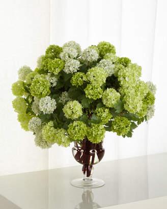 NDI Snowball Hydrangea Faux-Floral Arrangement in Glass Urn