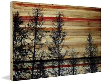 Parvez Taj Union Rustic 'Trees Against Red Sky' by Painting Print on Natural Pine Wood