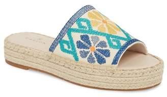 Caslon Cammy Platform Slide Sandal (Women)