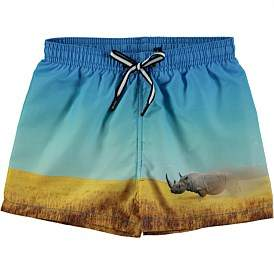 Molo Boys Swim Board Shorts (4-6 Years)