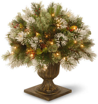 """clear National Tree Company 24"""" Wintry Pine Porch Bush with Cones & Red Berries & 50 Lights"""