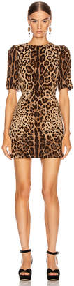 Dolce & Gabbana Simple Mini Dress in Leopard | FWRD