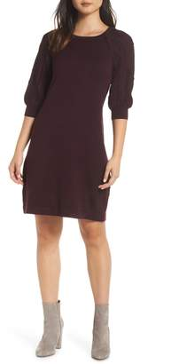 Eliza J Cable Sleeve Sweater Dress
