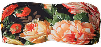 Dolce & Gabbana Floral-print Bandeau Bikini Top - Black