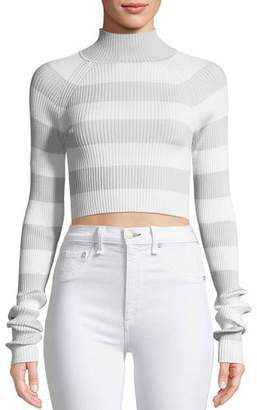 Zimmermann Breeze Tube Turtleneck Striped Crop Knit Top