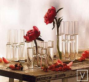 Roost Satellite Vases