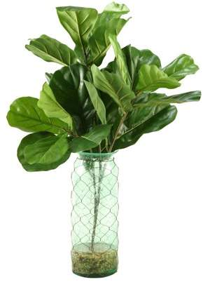 D&W Silks Fiddle Leaf Fig Branches in Blue Glass Vase