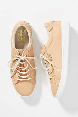 Keds Ace Sneakers