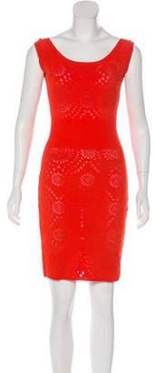 Adam Jones Sleeveless Knit Mini Dress