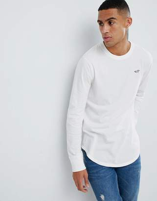 Hollister curved hem long sleeve t-shirt with seagull logo in white