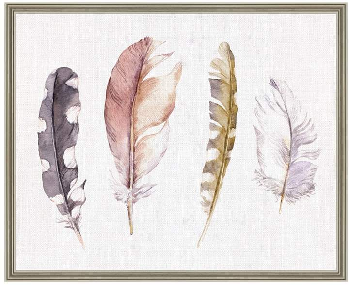 Feather Collection (Shadowbox)
