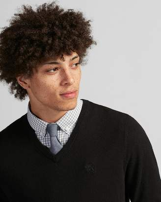 Express V-Neck Embroidered Lion Sweater