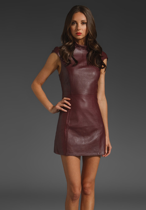 Shakuhachi Leather Mini Dress