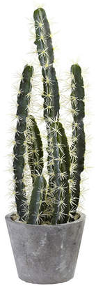 Asstd National Brand Nearly Natural Decorative Cactus Garden With Cement Planter