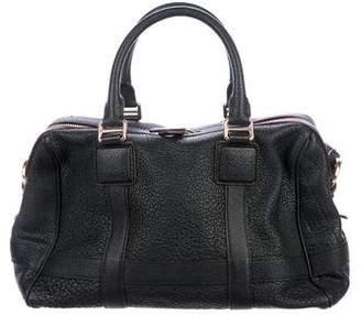 Loewe Leather Amazona Satchel