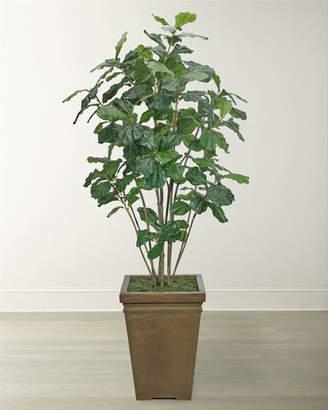 NDI Fiddle Leaf Tree in Square Planter