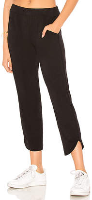 Velvet by Graham & Spencer Nico Pant
