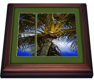 3dRose Palm Tree, Trivet with Ceramic Tile, 8 by 8-inch