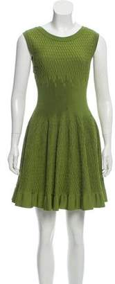 Alaia Textured Sleeveless Fit and Flare Dress
