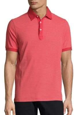 COLLECTION Striped Cotton Polo
