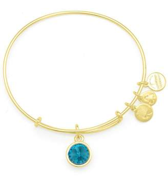 Alex and Ani December Expandable Bangle