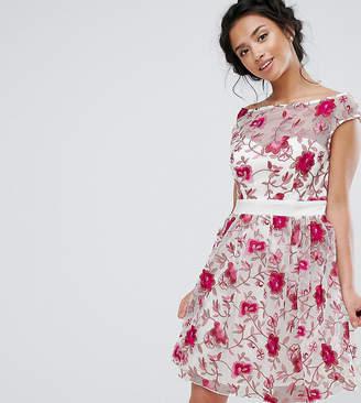 Little Mistress Petite Premium Embroidered Skater Dress