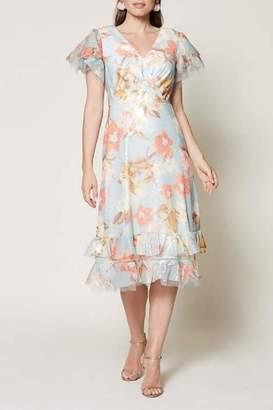 Sachin + Babi Rose Dress