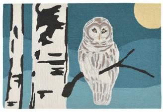 Liora Manné Frontporch Snowy Owl Night Indoor Outdoor Rug