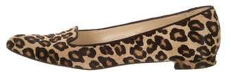 Manolo Blahnik Ponyhair Animal Print Loafers Brown Ponyhair Animal Print Loafers