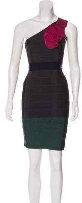 Herve Leger Rosette Bandage Dress