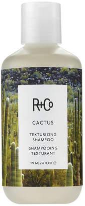 R+CO Cactus Texturing Shampoo