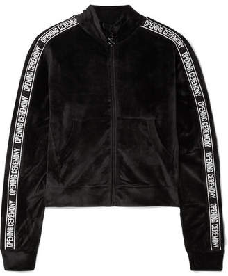 Opening Ceremony Intarsia-trimmed Velour Track Jacket - Black